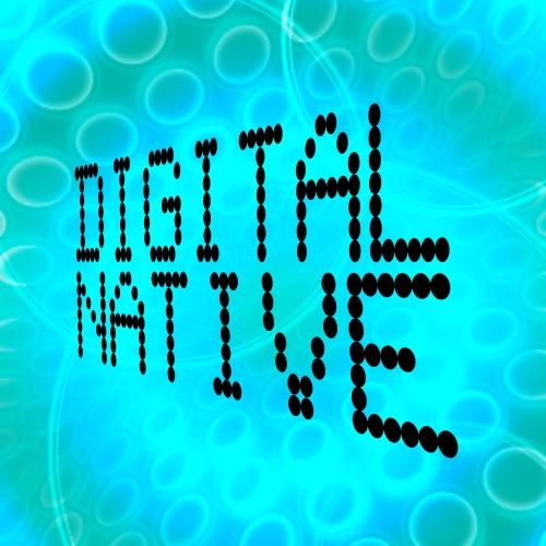 Directivo Digital