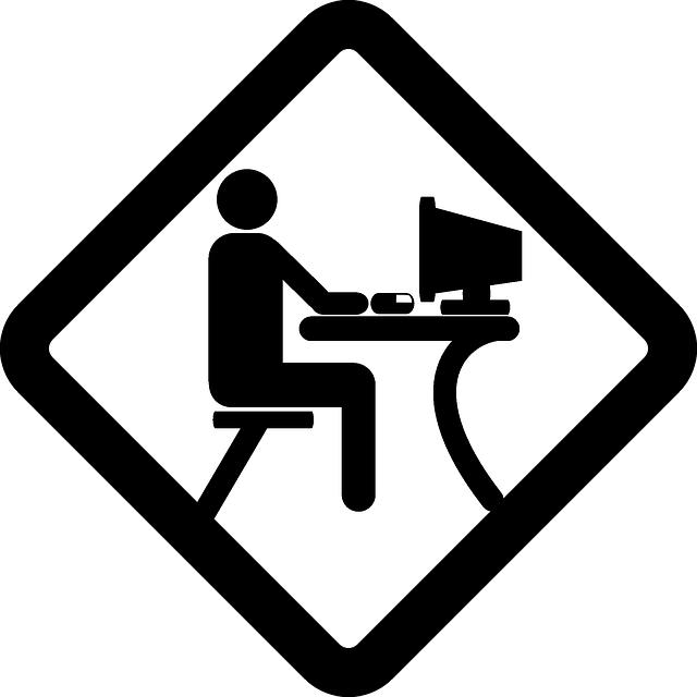 El Perfil de Programador Informático perfecto